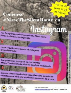 Cartel Concurso Nieve en The Silent Route